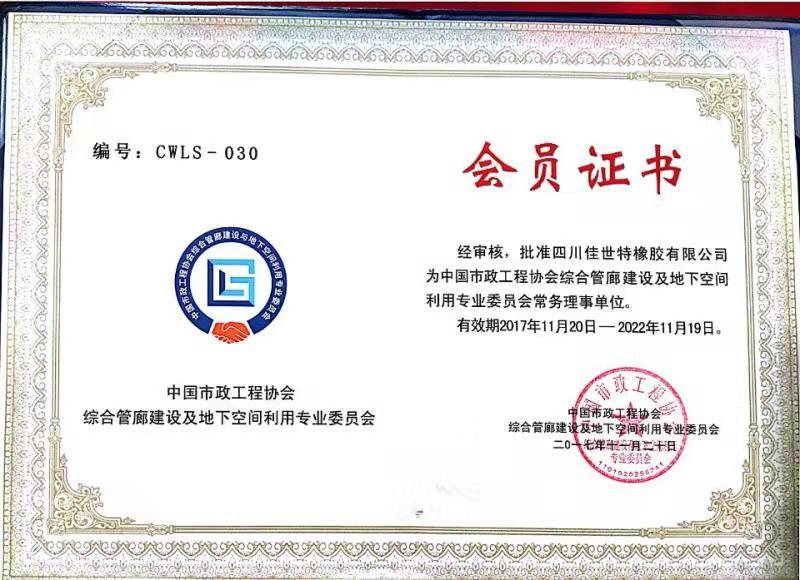 中国市政工程协会 综合管廊及地下空间利用专业委员会